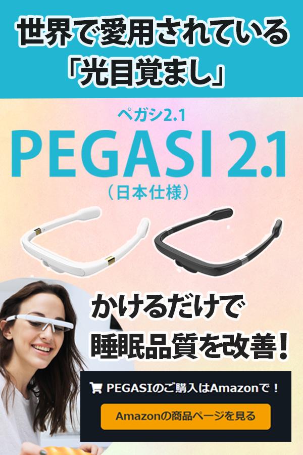 PEGASI2.1(日本仕様)
